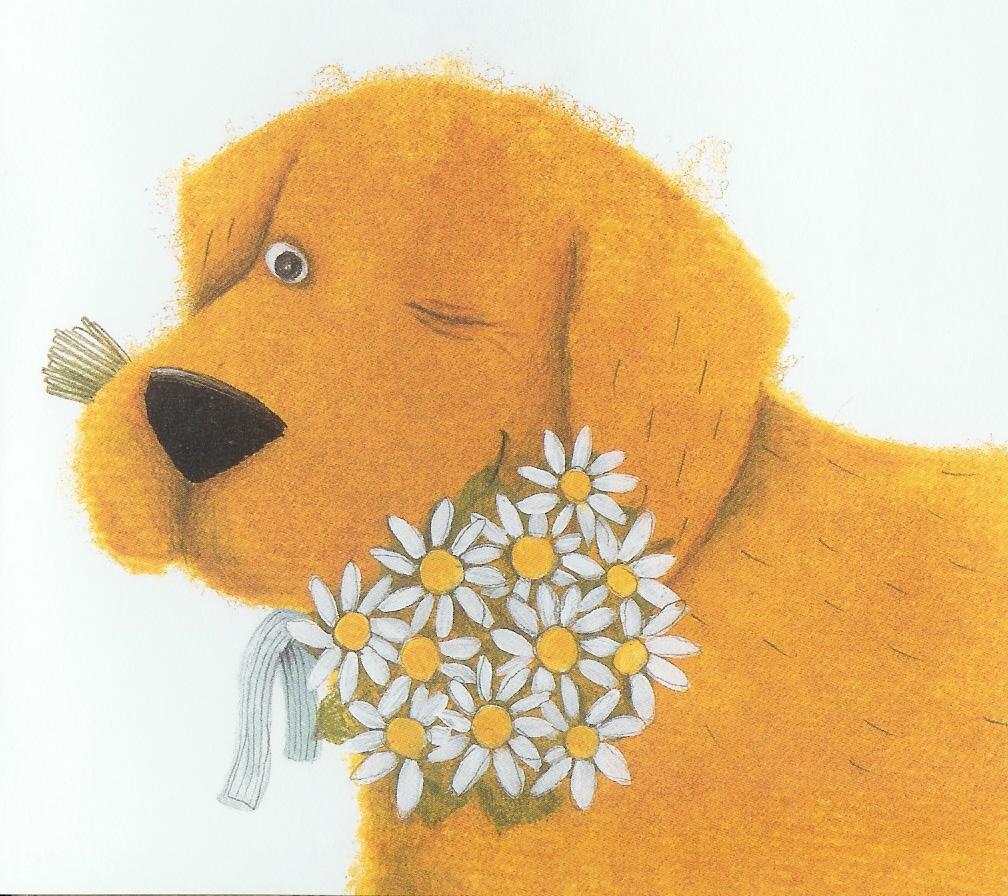 kluk a pes -kytky